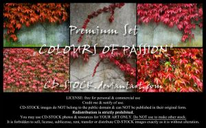 Colours Of Passion by CD-STOCK Premium Set Preview by CD-STOCK