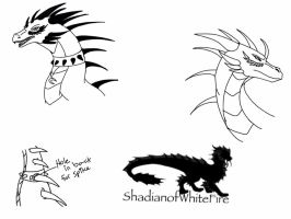 Sketches of a Certain Dragon by ShardianofWhiteFire