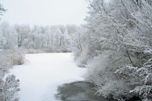 winterland 11 by priesteres-stock