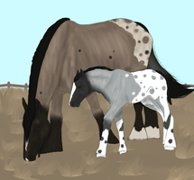 Mother and Colt by FaeAdopts