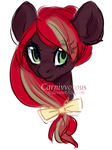 Gift - Cinnamon Spice by Carnivvorous