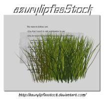 3D object - grass2 by AzurylipfesStock