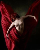Red Renaissance by bigskystudio