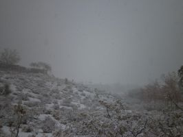 Snow in LAS VEGAS? by damienkerensky