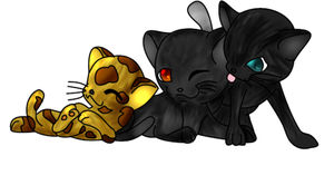 .comMy warrior cats by Narumaki1