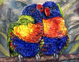 Rainbow Lorikeets by Novawuff