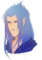 +Saix + by taka-maple