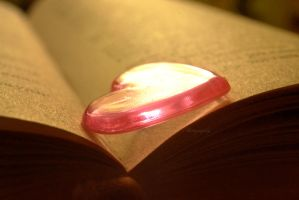 Literate Heart by Floreina-Photography