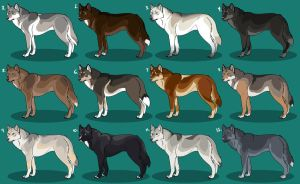 Realistic Wolf Adoptables 3: CLOSED! by Nature-Ridge-Adopts