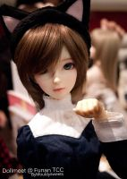 [Backlog] May Dollmeet by Mouldysweets
