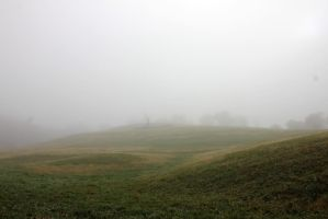 Fields of Fog 01 by Thy-Darkest-Hour