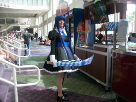 Megacon'14: Stocking Anarchy by CronaBaby