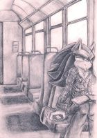 Sunny train. by silverstar23