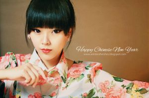 Happy Chinese New Year Everyone by winterofwishes