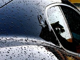 Maserati Badge -After the Rain by TVRfan