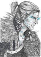 Anders by Schepard