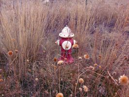 Fire Hydrant in a field by TheBitterBullet
