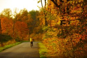 Autumn Cyclist by DreamChaser-5