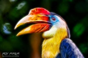 Hornbill: Fractalius Re-Edit by nerdboy69