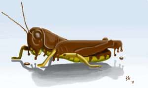 Chocolate Covered Grasshopper by Miss-A-sketches