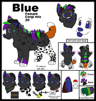 Old Blue Ref by Miiroku
