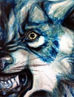 Blue Wolf by Ospreyghost13