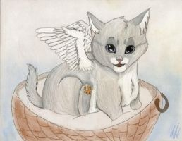 Baby Silverwing by Satyrtail