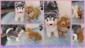 American Girl Husky and Wolf 10inL by Vesperwolfy87