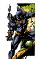 Black Panther colored by rapnex