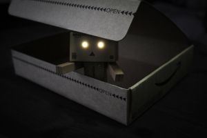 Danbo Box by error-23