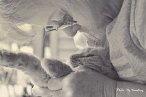 The love of a cat by RazorxBladexPhotos