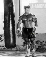 Lee Priest Wolverine concept by JayC79