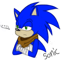 Sonic is not impressed. (Colored) by Nakuro170