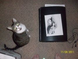 """Art Critic Cat says """"Iss aprroves your work. by Firefaryee"""