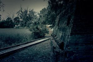 Road To Ruin by adamforce