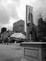 Can you find the bride? Bean - Millennium Park by zackthemac