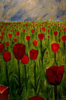 Field of Red Tulips by akyra