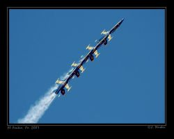 Perfect Flying by jdmimages