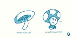 Different Kinds of Mushrooms by JK-Kino