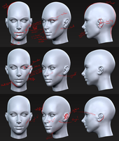 Week 3 - Head analysis and revision by Almightygir