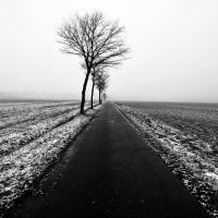 tristesse by augenweide
