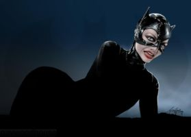 Burtons Catwoman by gavwoodhouse