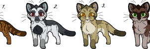Kitten Point Adoptables Set 1 GONE by Kasara-Designs