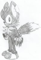 Drake the Wolf Side View/ w. Bio by Sonicdude645