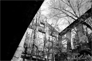Abandoned Carbide Mill XIII by NRT