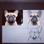 Another dog by Tuguel