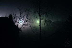 Night Fog - the magical moment by 6v4MP1r36