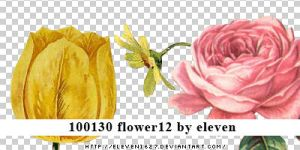 100130_flower12_by_eleven by eleven1627
