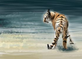 Tiger in the Water by camikyra