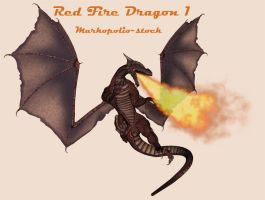 Fire Dragon 1 - Feb 13 08 by markopolio-stock